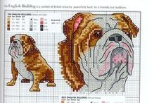 Cross stitch - bulldogs, pitbulls and bullterriers
