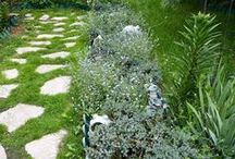 Gardens loved by Brigitte / Picture of flowers and gardens that I love. Some of my garden or flower pictures may be included / by Brigitte's Beauty Care Canada