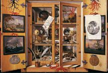 wunderkammer / cabinet of curiosities ... a collection of small and large objects that I love