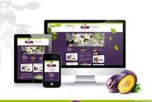 Web responsive / Un site Internet pour tous vos écrans