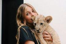 Animals//