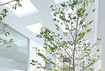 Architecture / by creativesensefr