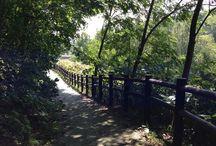 Hokkaido 20140911-16 / 1年以上ぶりに帰省した旭川と札幌の風景など。
