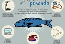 Infografias Mercado Central Zaragoza / Distintas infografías utilizadas.