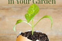 Farming/Gardening