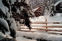 SNOWBUNNY...; ) / by Redd Redd