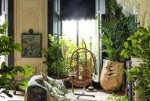 G A R D E N / Gardens and greenery that inspires us, DIYs, and more.