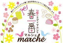 Design_Spring