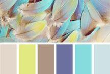 Colour/Moodboard