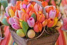 {festive} Spring & Summer fun ideas / by The Village Journal