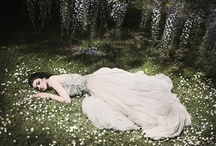 pretty pretty princess / by Alisa Noble