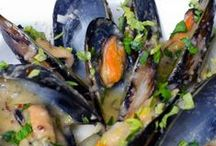 Seafood / Lots of beautiful dishes from the sea