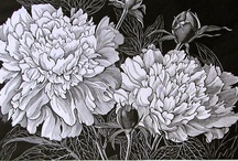 Blossoming Botanicals