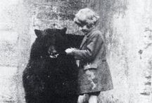 Winnie the Bear - A True Story / A true story, Winnie the Bear is the biography of a Canadian black bear named after the city of Winnipeg and adopted by Lieutenant Harry Colebourn, a kind veterinarian, who was en route overseas at the beginning of World War One.