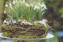 Easter Craft / Creating and decorating for Easter
