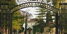 The Bab and Baha'u'llah: Two Lives, One Story a Wilmette Institute Online Course, February 7, 2017 / This online course about the Bab and Baha'u'llah is taught by Druzelle Cederquist and Ed DiLiberto, with readings from the book the Story of Baha'u'llah.  To learn more go to www.wilmetteinstitute.org