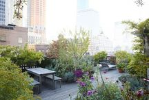 Daktuinen / Roof gardens | Garden Job / Pictures for inspiration and ideas for small gardens on a rooftop.