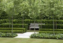 Hedges / Heggen | Garden Job / Some inspiration for nice hedges.