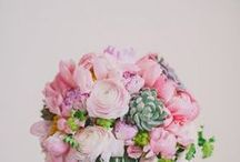Flowers and Arrangements / Flowers, garden, floral, bouquet, florist, peonies, roses, pretty flowers, pink flowers, girly, fresh flowers.