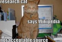 Are kitten a new medium for science communication? / Images of kitten science memes and more