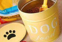 DIY Animal Crafts / DIY Animal Crafts & Ideas!