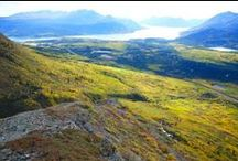 Yukon Hikes And Trails / Enjoying Yukon's Outdoors