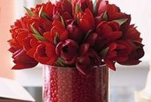 Holidays / Holiday decorations and recipes. Christmas, Valentine's Day, Easter, July 4th