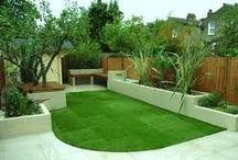 plant & garden idea