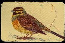 gestickte Vögel - embroidered birds / frei gestickt auf feinen Stoffen
