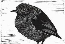Vögel - Graphiken, Zeichnungen, Drucke