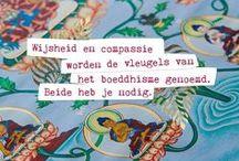 ✽ Happinez ✽ / Quotes from the magazine Happinez