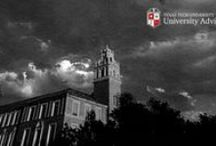 Texas Tech Student Resources / by Texas Tech University Advising