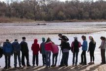A December 2013 Walk in the Bosque / A group of sixth-graders bundled up and braved the early December cold on a recent Experiential Education day hike in the Rio Grande Bosque.