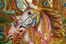 MERRY-GO-ROUND-THE-ROSY / by Linda Carpenter