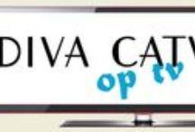 BN-ers --> Diva's / BN-ers die Diva Catwalk dragen.