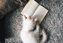 Books & Libraries / An eclectic collection of bookish things from around the web.