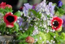 Flowers ! / Bloemen, overal en altijd !