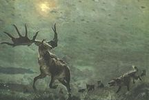 Irish Elk Deer / The Irish elk (Megaloceros giganteus) was a species of Megaloceros and one of the largest deer that ever lived. Its range extended across Eurasia, from Ireland to northern Asia and Africa, but a related form is recorded from China during the Late Pleistocene. The most recent remains of the species have been carbon dated to about 7,700 years ago in Siberia. Recent phylogenetic analyses support the idea of a sister-group relationship between fallow deer (Dama dama) and the Irish Elk.