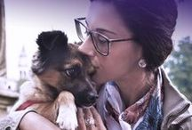 SHINE COLLECTION cane / Una collezione preziosa come i nostri cuccioli pelosi.
