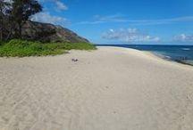 Oahu island <3
