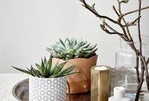 Am Coffeetable mit NUMMER FÜNFZEHN / Ich habe eine große Schwäche dafür kleine Ecken zu dekorieren und den Beistelltisch im Wohnzimmer mit kleinen Details zu verschönern.