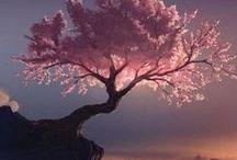 Asia: Native trees & plants