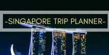 TRAVEL | SINGAPORE / All you need to know for your visit to the tourism hotspot of Singapore, one of our favourite destinations in Asia.   Includes guides, tips and in-depth stories to help you plan your visit to Singapore.