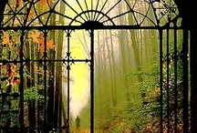 Paths, Portals, Windows / Come in. Look out. Walk all about. / by Leslie Lawrence Tamayo