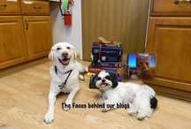 Stow Kent's Blogs / Check out our awesome blog written by our staff and doctors / by Stow Kent Animal Hospital