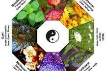 Feng Shui, holistic, Zen, meditative gardens and green spaces