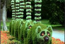 Topiary / by Sergio Gomes