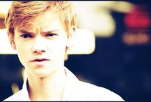 • Thomas Cutie Sangster • / Bloody hell he's ma Bae *-*