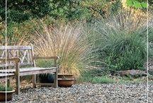 Drought Gardening Inspiration / drought resistant plants, succulents, California native plants, xeriscape