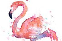 Flamingos / Pink Flamingos ara wellcome